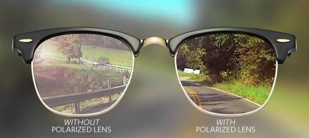 what-are-polarized-lenses