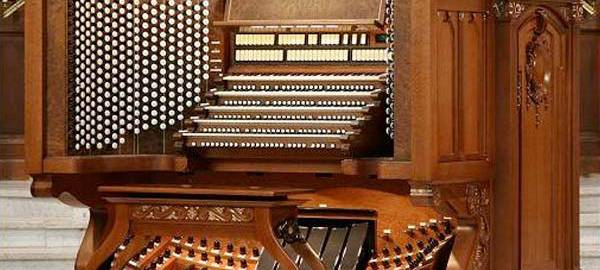 what-is-an-organ